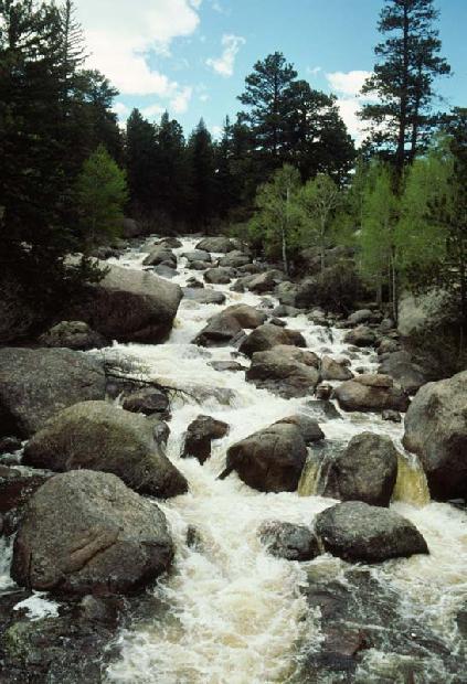 Rockie Mountain Stream