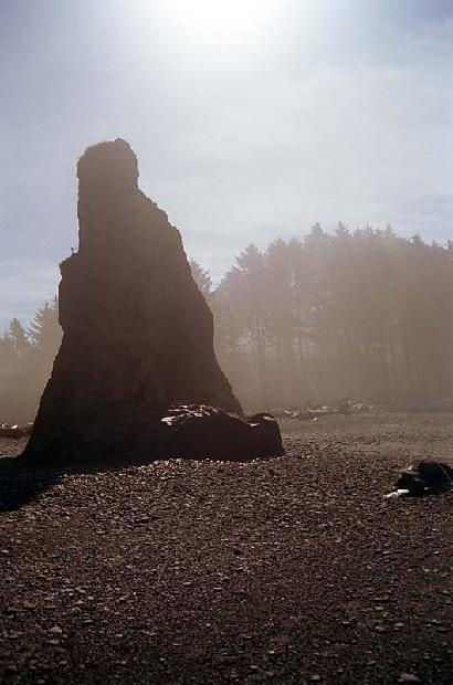 Pacific Northwest Shoreline