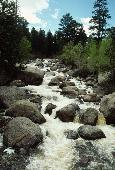 ROCKIE MOUNTAIN STREAM